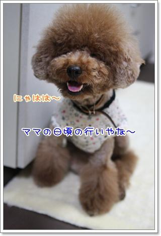 2_20090616202601.jpg