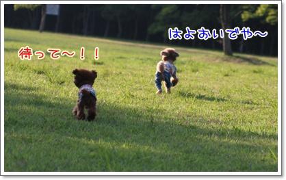 2_20090629225132.jpg