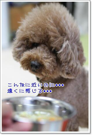 2_20090701230403.jpg
