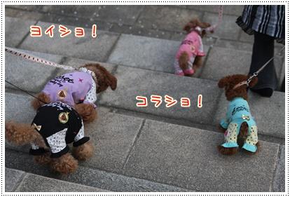 3_20090415204307.jpg