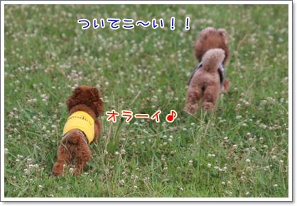 3_20090712222822.jpg