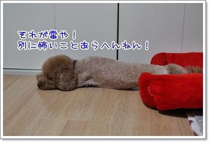 3_20090720012335.jpg