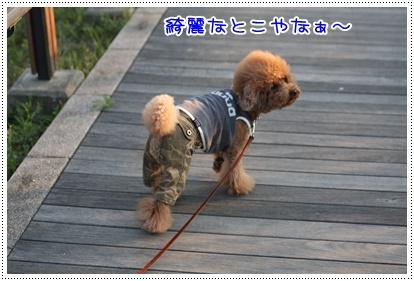 4_20090415204307.jpg