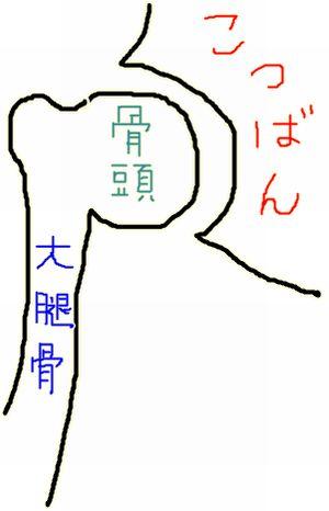 4_20090509012133.jpg