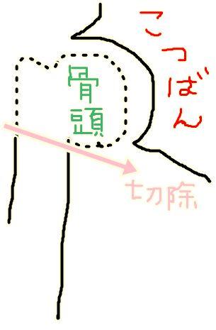 5_20090509012133.jpg