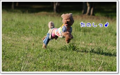 7_20090628231552.jpg