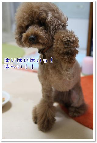 7_20090701232413.jpg
