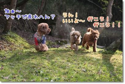 8_20090405224551.jpg