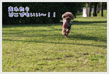 8_20090509231744.jpg