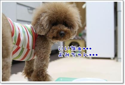 9_20090606222613.jpg