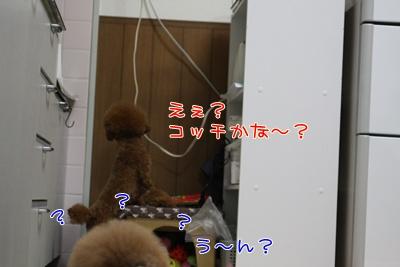 e_20090328001742.jpg