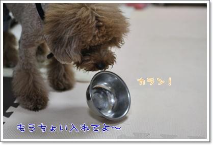 f_20090321000852.jpg