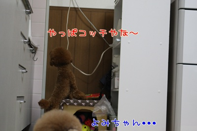 f_20090328001805.jpg