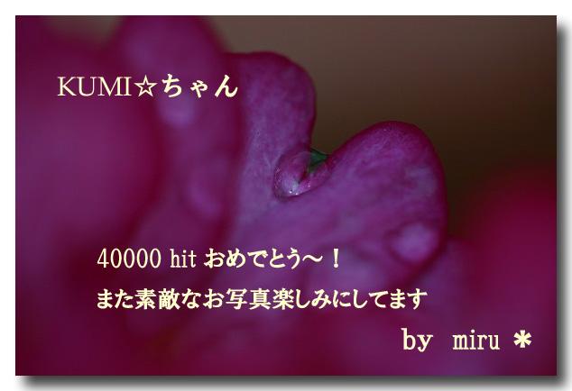 20050125093310.jpg