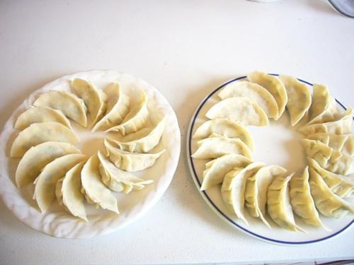 veggie dumpling3