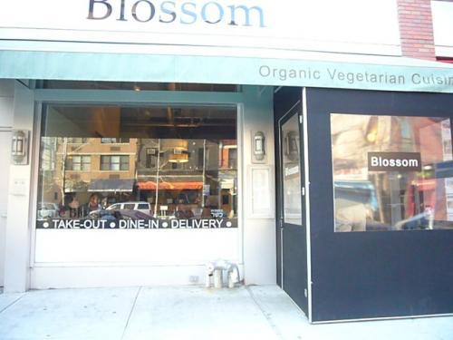 Blossom cafe1