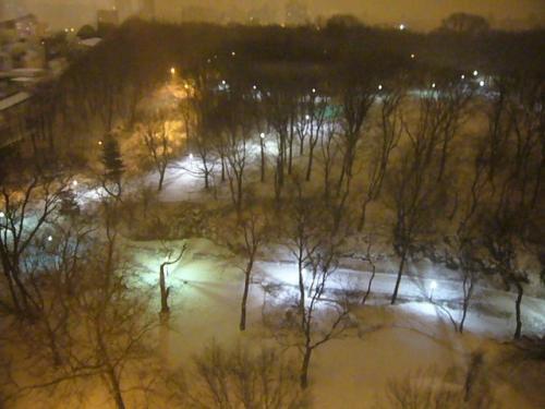 snow0212.jpg