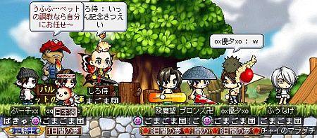 Maple090806_230323.jpg