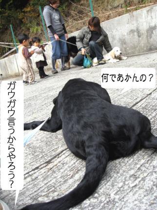 yamato-11.jpg