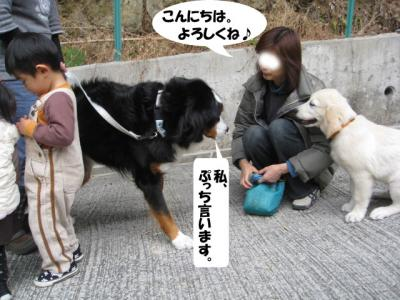 yamato-9.jpg