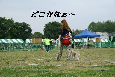 DSC04886.jpg