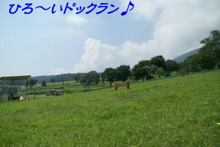 DSC09833.jpg