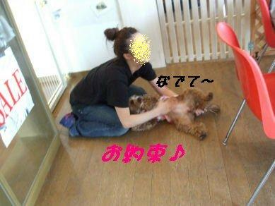 DSCF0167.jpg