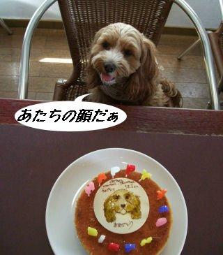 くる&ケーキ