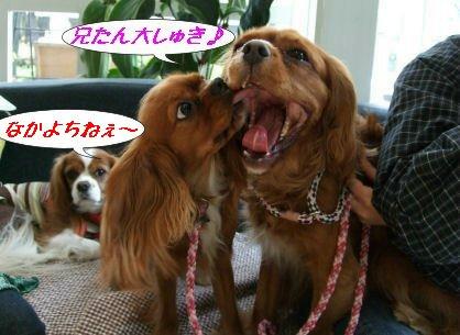 なかよし~☆