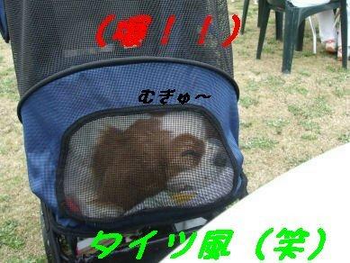 DSCF1367.jpg