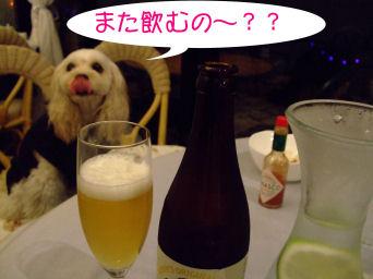 また飲むの???