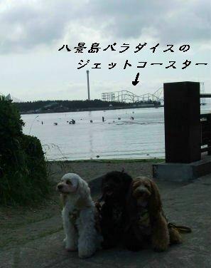 DSCF1771.jpg