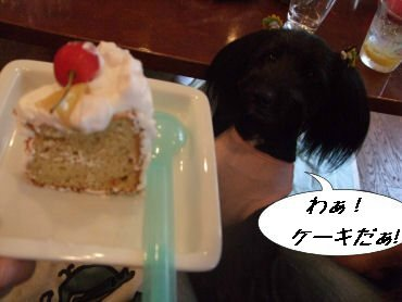 なっちとケーキ
