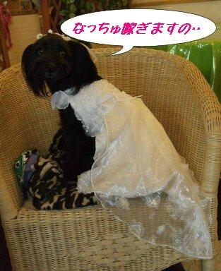 なっちゅもドレス