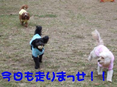 DSCF3706.jpg