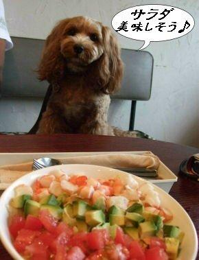 サラダ&くるみ