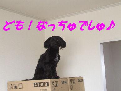 DSCF5418.jpg
