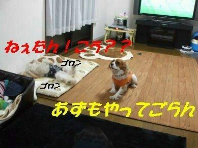 DSCF5687.jpg