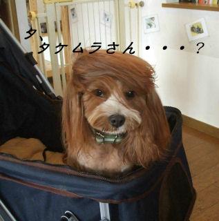 タケムラさん(笑)