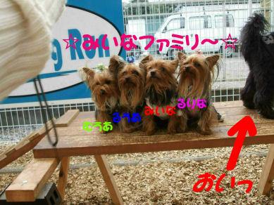 DSCF7426.jpg