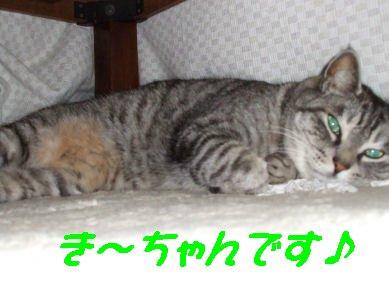 DSCF7574.jpg