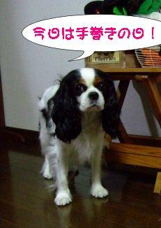 DSCF8489.jpg