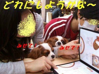 DSCF9782.jpg