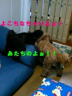 PA0_0034.jpg