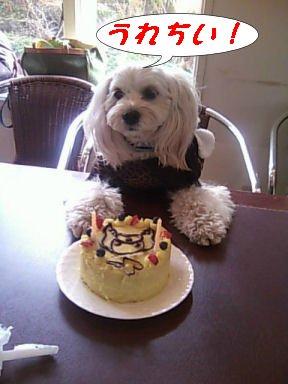 あず&ケーキ