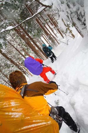 2009-01-11_0851.jpg