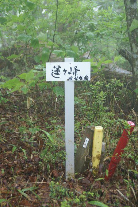 20090517弥仙山2