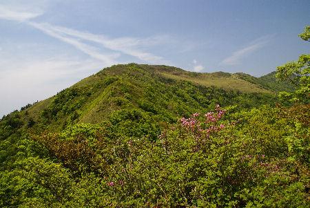 20090523笹ヶ峰1