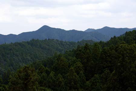 20090927楊柳山3
