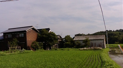 20080705161119.jpg